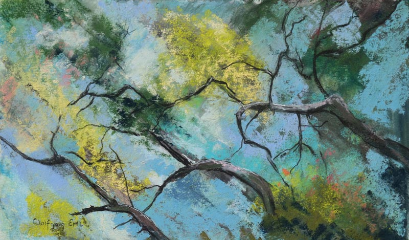 Florida Oak 3, Pastel, 6 x 10 in. (2015)