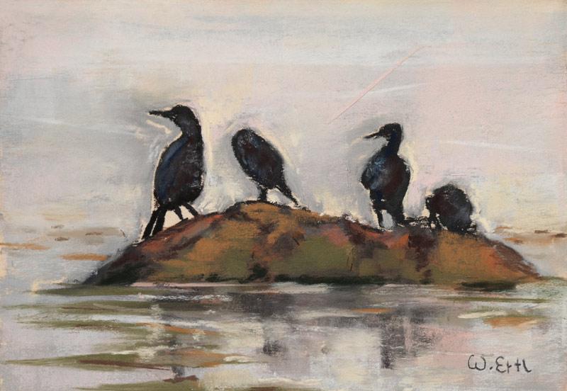 """Cormorants, Pastel, 4.5"""" x 6.5"""" (2015"""