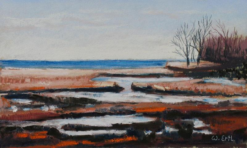 ertl-november-marsh