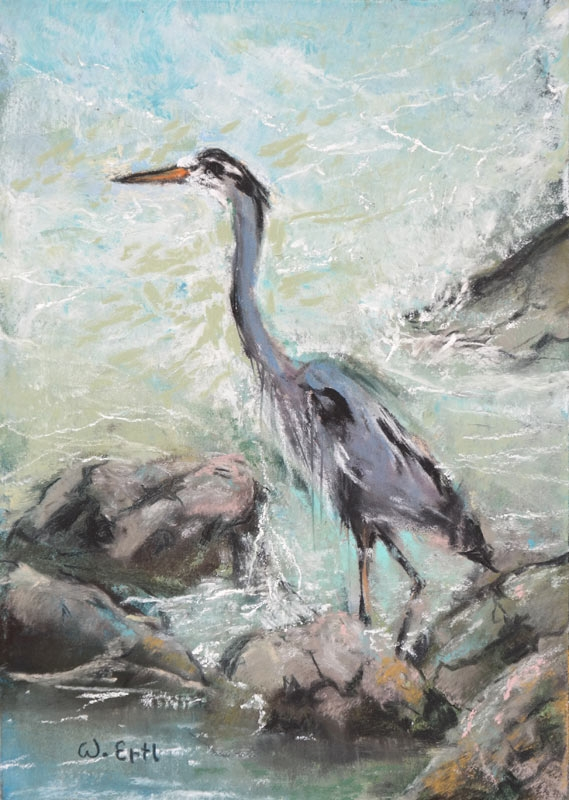 "Great Blue Heron, Pastel, 7"" x 5"" (2018)"