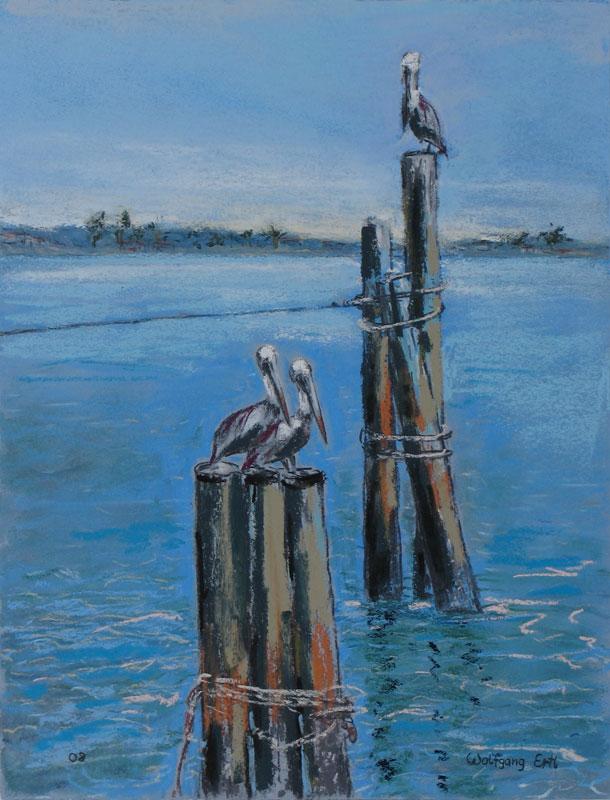 ertl-pelicans
