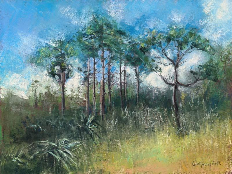 ertl-slash-pines-everglades