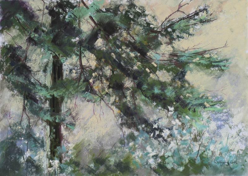 ertl-black-forest-germany-4