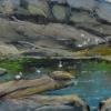 ertl-monhegan-tidal-pool