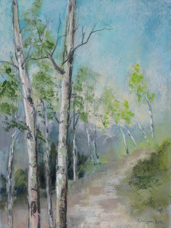 Rocky Mountain Trail 3 (2013)