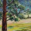 ertl-ponderosa-pine