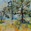 ertl-ponderosa-pines